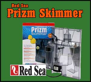 Red Sea Prizm Skimmer