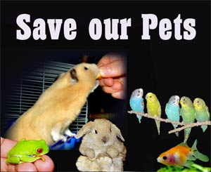 Save Our Pets