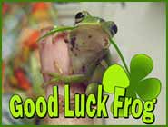 Frog Luck, Bringing Changes and Abundance to Life