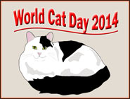 World Cat Day 2014, a Journey Eons in the Making