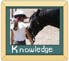 Horse knowledge