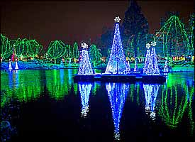 Light Up Your Holidays With A Celebration At The Zoo