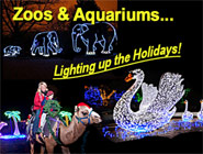 Light Up Your Holidays with a Celebration at the Zoo!