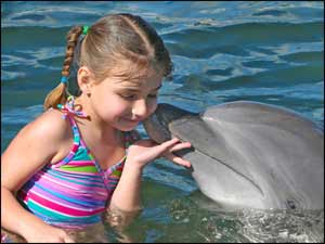 Child kissing a dolphin!
