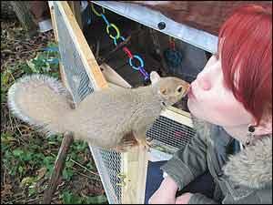 Woman kissing a Squirrel!