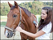 Horse Care Tips For Spring