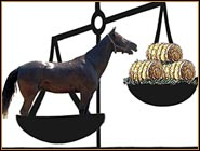 How do you keep Tennessee Walking Horse weight balanced?