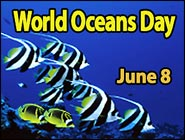 Celebrating World Oceans Day 2015, June 8th!