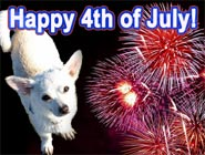 Tips for keeping pets safe and happy this 4th of July
