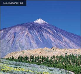 Tede National Park – Central Tenerife