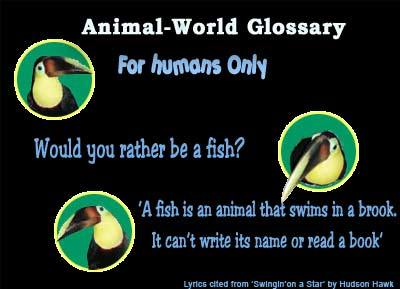 Glossary of terms for freshwater fish, saltwater fish, and coral reef animals