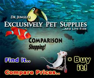 Pet Supply Comparison Shopping